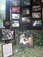 Belize Zoo (260 of 779)