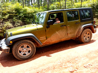Jeep (496 of 779)